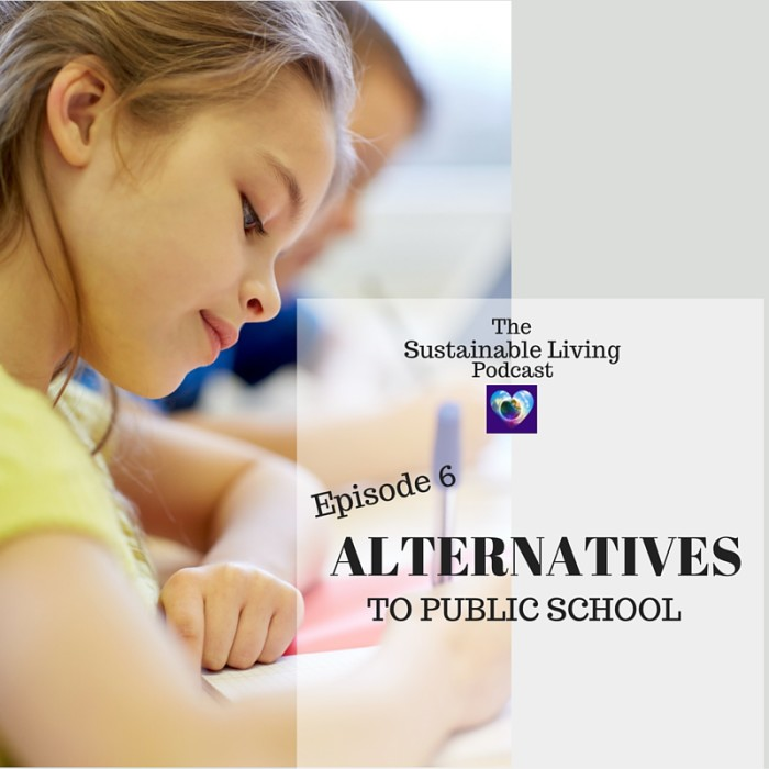 Public School Alternatives
