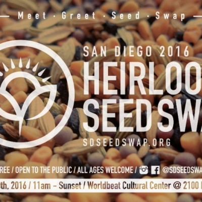 Seed Swap – How and Why