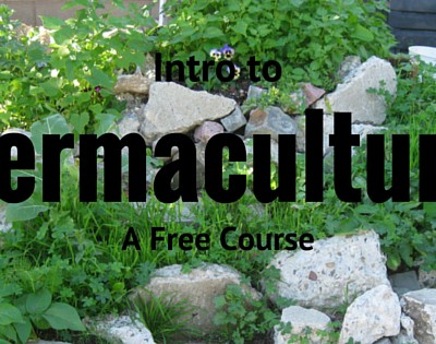 Free University Permaculture Course