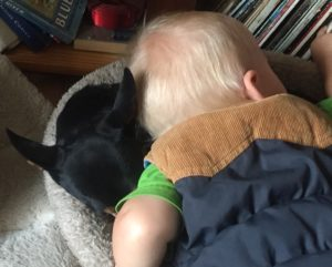 dog and baby hugging the dog