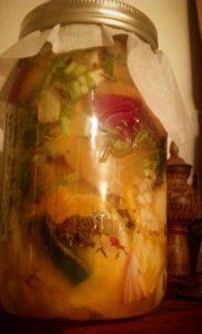 Jar of Fire cider