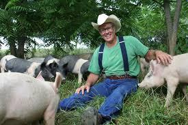 Joel Saltin pigs