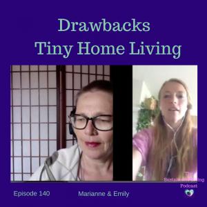 Drawbacks of Tiny House