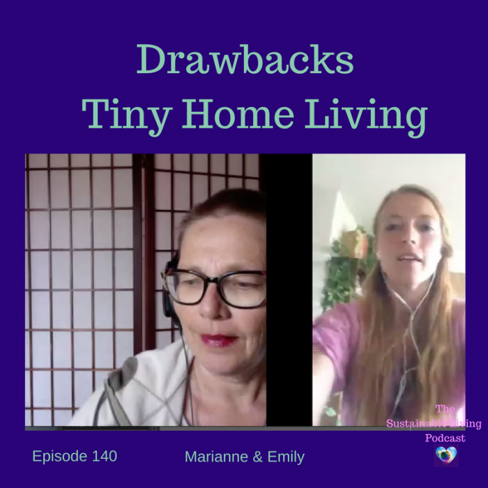 Drawbacks of Tiny House