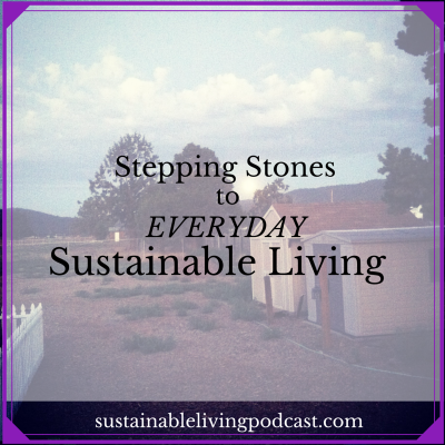Episode 4 – Stepping Stones to Everyday Sustainable Living