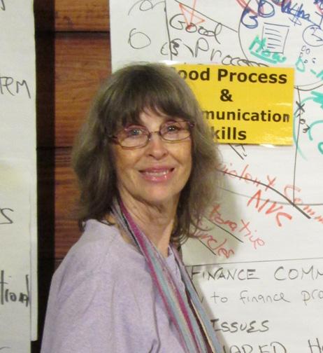 Author Diana Leafe Christian