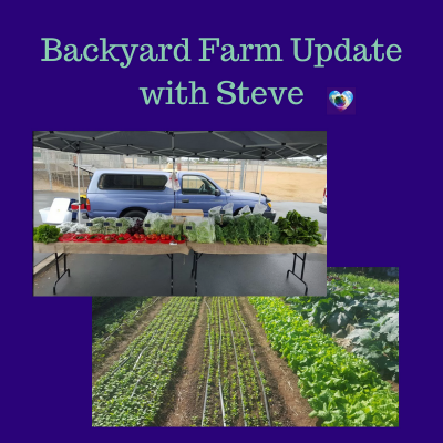 Backyard Farm Update and a Story
